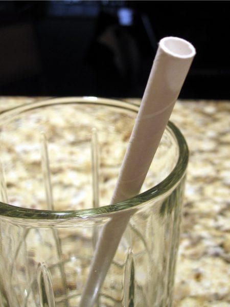 Aardvark paper drinking straw