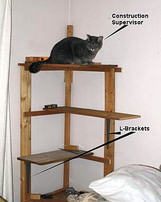 so i was gonna leave it at that but i decided that it really looked more like an off kilter bookshelf than a kitty tree plus it really needed something - Cat Climber
