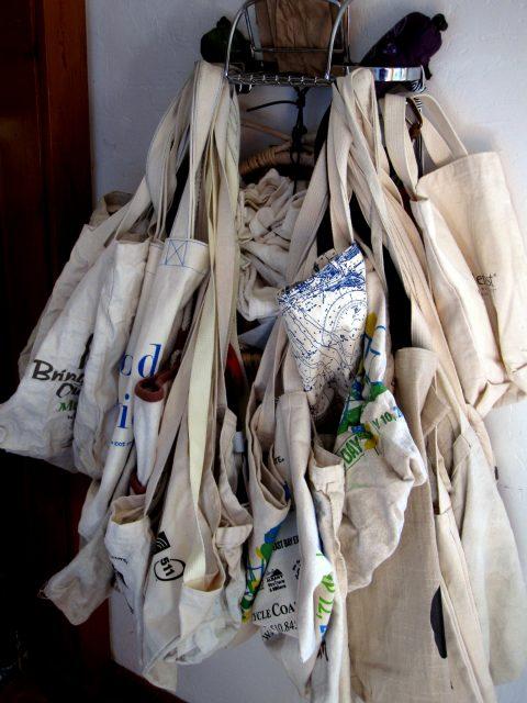reusable-bag-monster