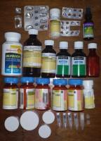 Beth-drugs-2013