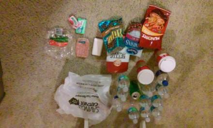 Plastic Challenge: Elora Hinckley, Week 1