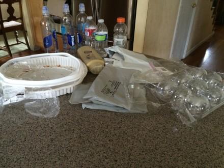 Plastic Challenge: Mary Halbasch, Week 1