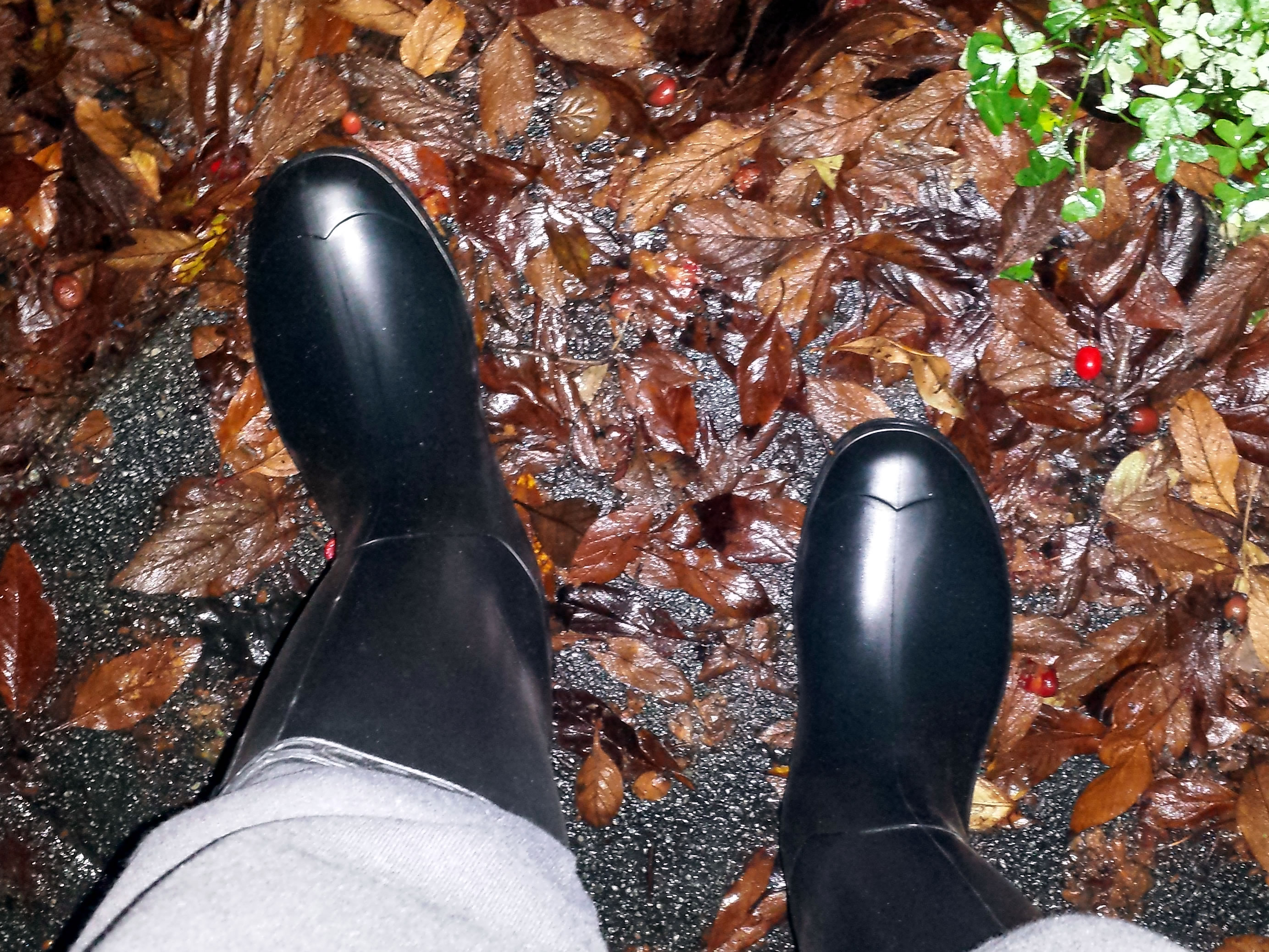 I Waited Until We Had The Biggest Rainstorm In Years To Even Think About Ing Rain Boots My Work Shoes And Socks