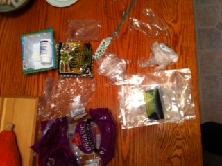Plastic Challenge: Swarn Leung, Week 1
