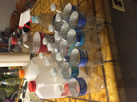 Plastic Challenge: Breana Mansapit, Week 1