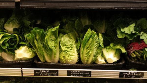 Zero-Waste-Naked-Lettuce-20151025_152956