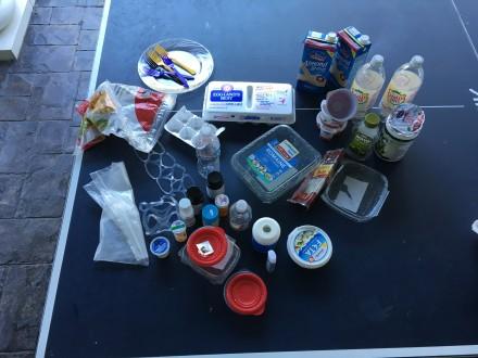 Plastic Challenge: Giannina Battaglia, Week 1