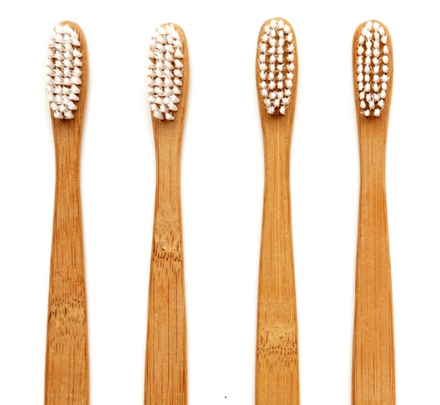 Image result for choose a perfect  wooden toothbrush