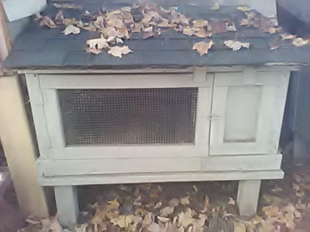 rabbit-hutch
