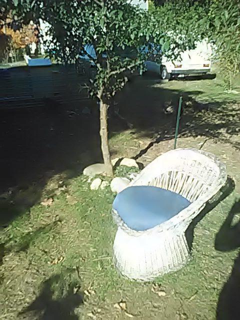 swap-shop-wicker-chair