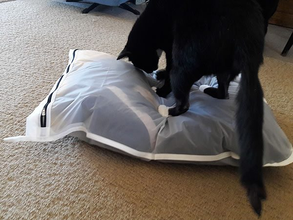 Cat loves Guppy Friend laundry bag