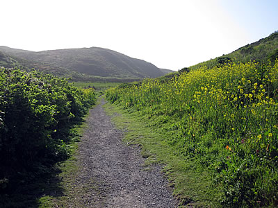path to Kehoe Beach