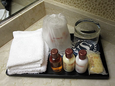 Travel amenities at Sheraton Hotel in Chicago