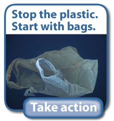 California plastic bag ban