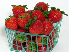 plastic strawberry basket