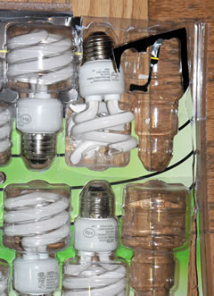 Lightbulbs in clamshell packaging