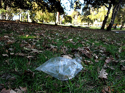 plastic baggie litter at Lake Merritt
