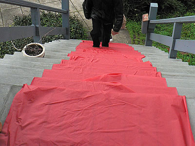 Beth and Michael's plastic red carpet