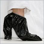 shoe slickers