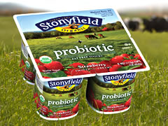 Stonyfield Farm yogurt