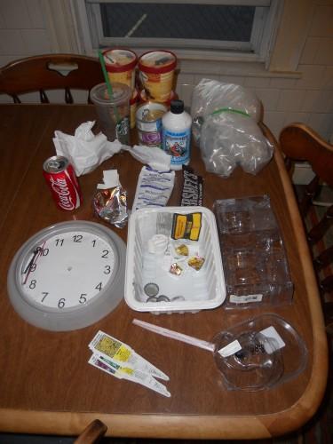 Plastic Challenge: Ellen Simpson, Week 13