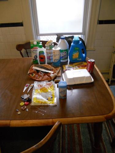 Plastic Challenge: Ellen Simpson, Week 7