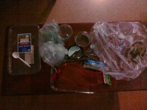 Plastic Challenge: Hanh Pham, Week 1