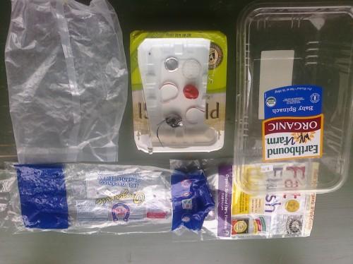 Plastic Challenge: Hanh Pham, Week 2