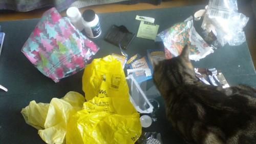 Plastic Challenge: Nan, Week 2