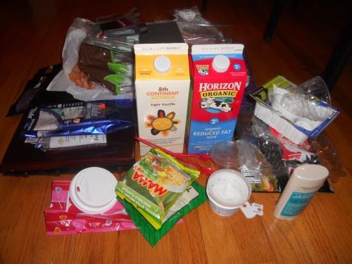 Plastic Challenge: Sara Hassan, Week 2