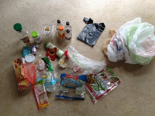 Plastic Challenge: Louise, Week 1