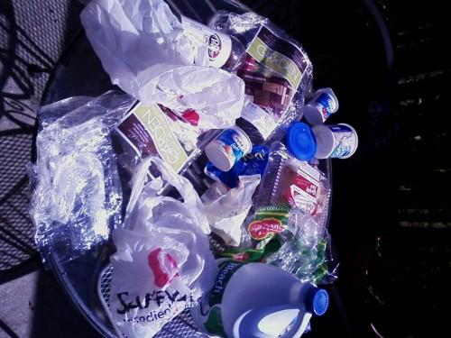 Plastic Challenge: Elena Cholula, Week 1