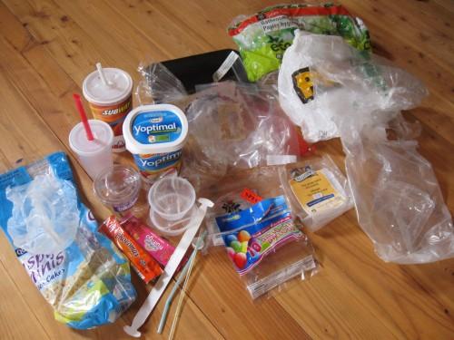 Plastic Challenge: Anny Frechette, Week 2