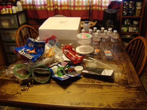 Plastic Challenge: Genevieve, Week 3