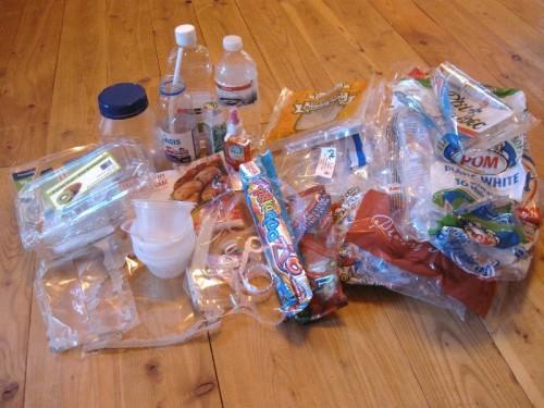 Plastic Challenge: Anny Frechette, Week 4