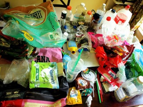 Plastic Challenge: DeAna Elwell, Week 1