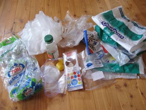 Plastic Challenge: Anny Frechette, Week 10