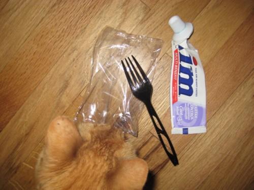 Plastic Challenge: jennifer patrick, Week 14