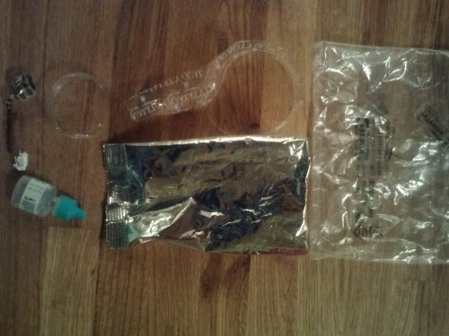 Plastic Challenge: Eve Stavros, Week 26