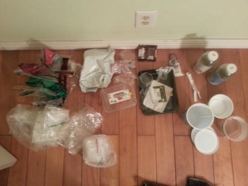 Plastic Challenge: Anh Chi  Pham, Week 1