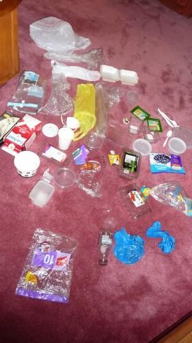 Plastic Challenge: Natalie, Week 2
