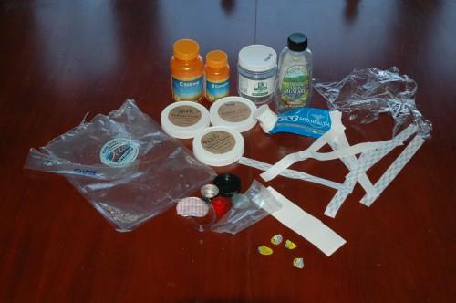 Plastic Challenge: Sarah M. Braik, Week 2