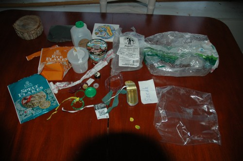 Plastic Challenge: Sarah M. Braik, Week 1