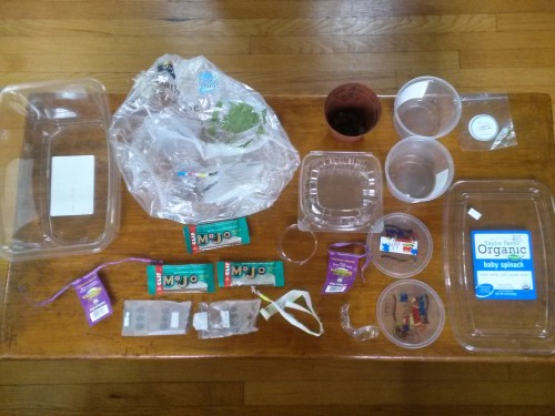 Plastic Challenge: Hanh Pham, Week 3