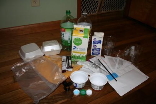 Plastic Challenge: Katie Sumner, Week 2