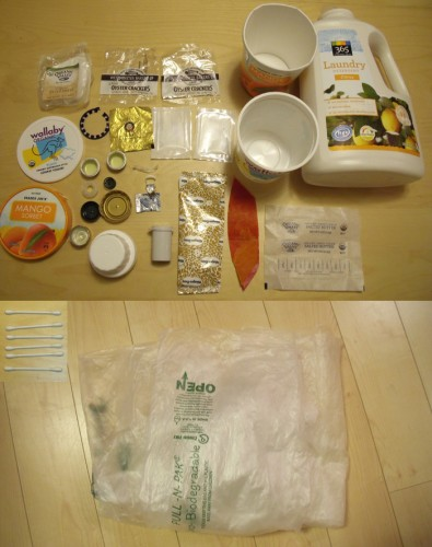 Plastic Challenge: Harumi, Week 7